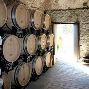 Amalfi Coast Wine Tours